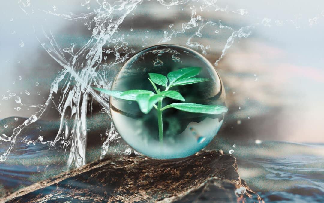Nachhaltig leben im Wassermannzeitalter